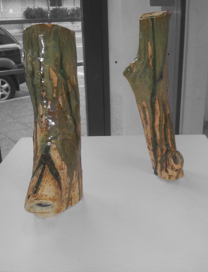 Olive grove & Olive wood
