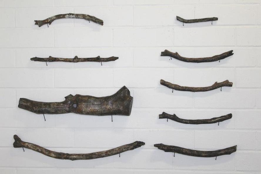 Ceramic Branches (many names)