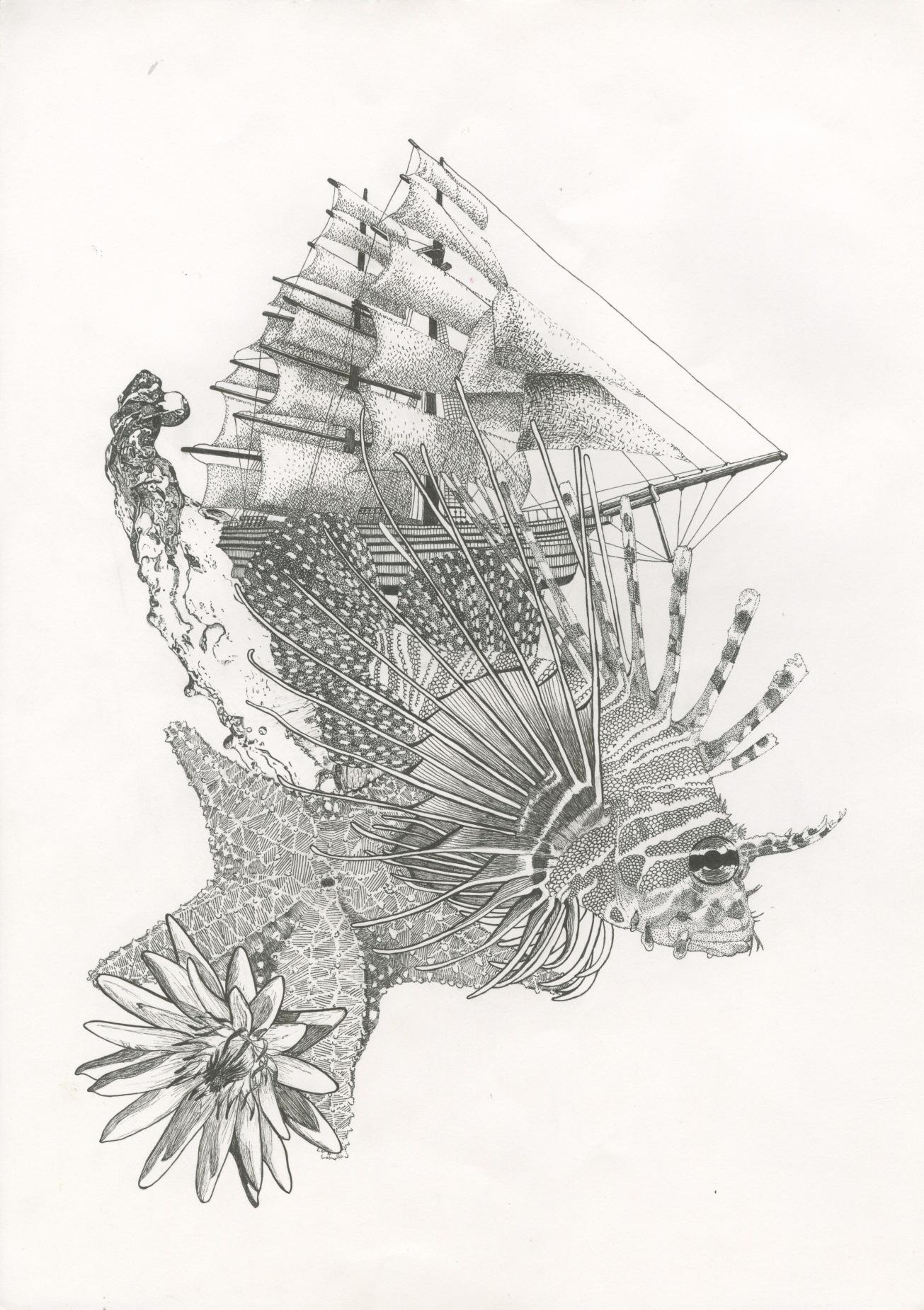 portfolio-work-2